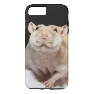 Rat Phone Case