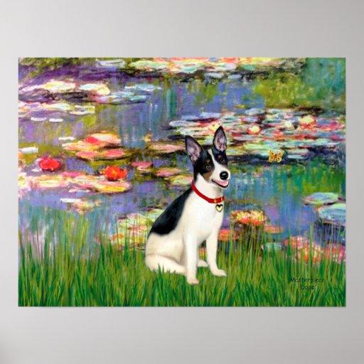 Rat Terrier - Lilies 2 Poster