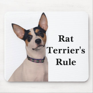 Rat Terrier's Rule Mouse Mat