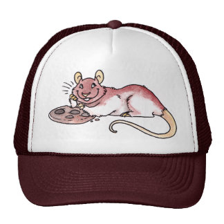 Rat with a Cookie Hat