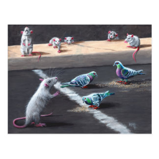 Rats and Pigeons Postcard