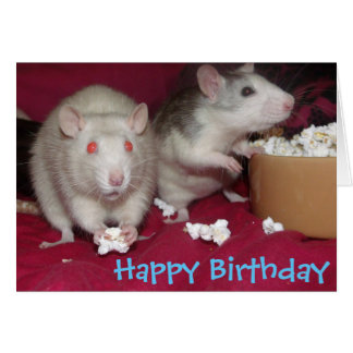 rats partying birthday card
