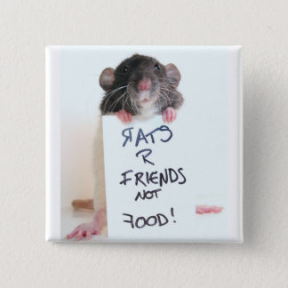 Rats R Friends Not Food 2 15 Cm Square Badge