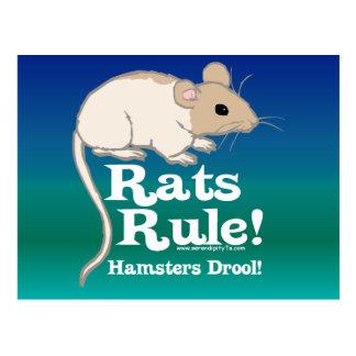 Rats Rule! Postcard