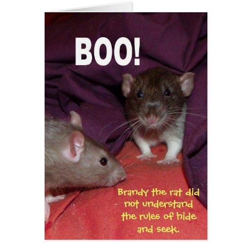 rats talking customizable greetings card greeting card
