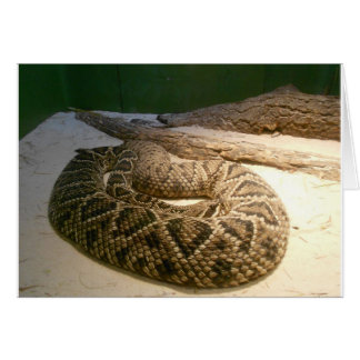 Rattle Snake Card