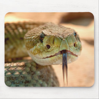 Rattle Snake Mouse Pad
