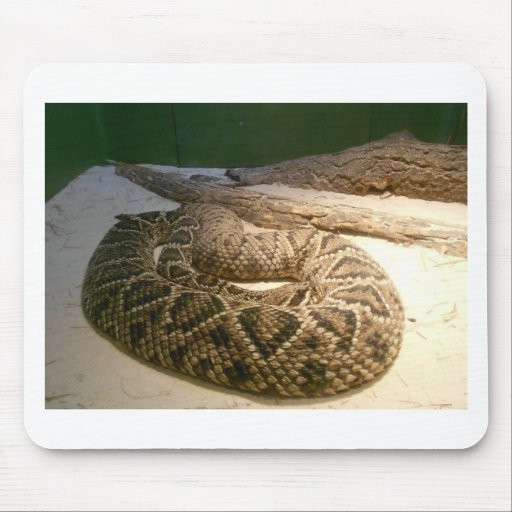 Rattle Snake Mouse Pads