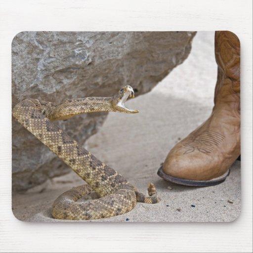 Rattle Snake Mousepads