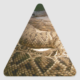 Rattle Snake Triangle Sticker