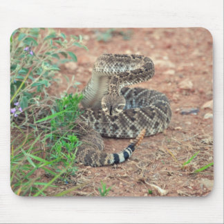 Rattlesnake Mouse Pads