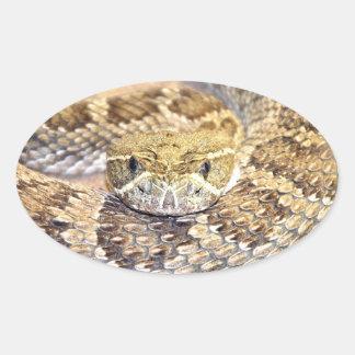 Rattlesnake Oval Sticker