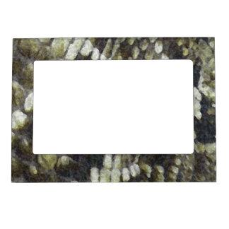 Rattlesnake Print Pattern Background Magnetic Frame