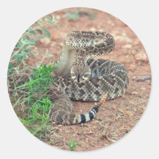 Rattlesnake Round Sticker
