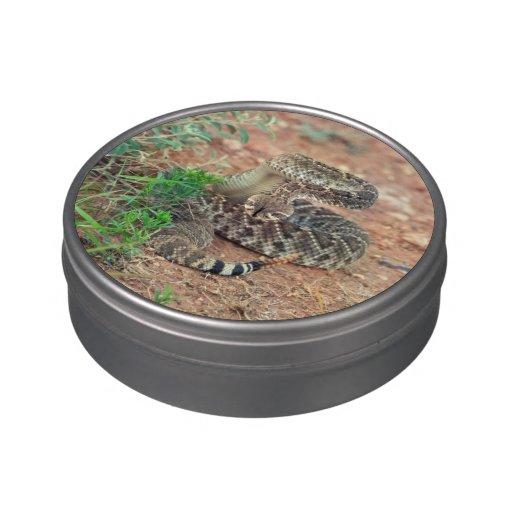 Rattlesnake Candy Tin