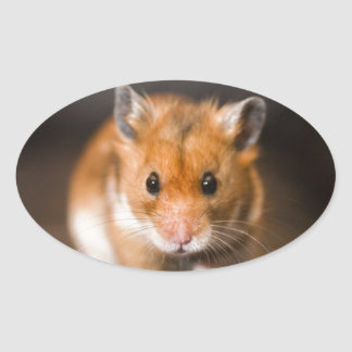 Ratty the hamster oval sticker