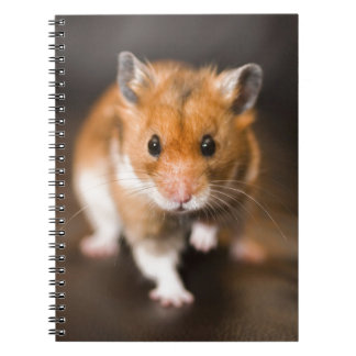 Ratty the hamster spiral notebook