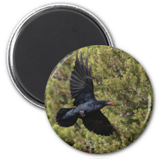 Raven Delivery 6 Cm Round Magnet