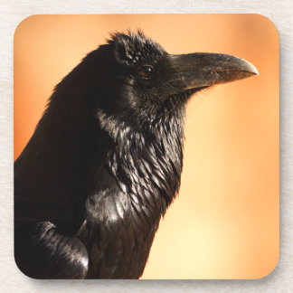 raven drink coasters