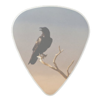 Raven on Sunlit Tree Branches, Grand Canyon Acetal Guitar Pick