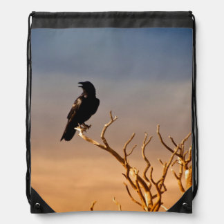 Raven on Sunlit Tree Branches, Grand Canyon Backpack