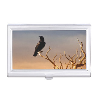 Raven on Sunlit Tree Branches, Grand Canyon Business Card Holder