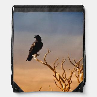 Raven on Sunlit Tree Branches, Grand Canyon Drawstring Bag