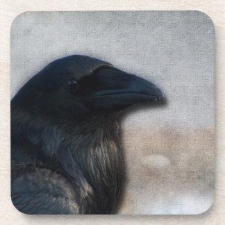 Raven Portrait Coasters