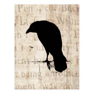 Raven Silhouette - Vintage Retro Ravens & Crows Postcard