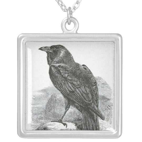 """""""Raven"""" Silver Plated Necklace"""