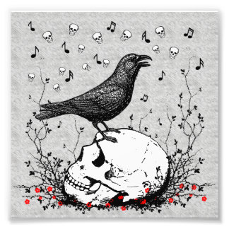 Raven Sings Song of Death on Skull Illustration Photograph