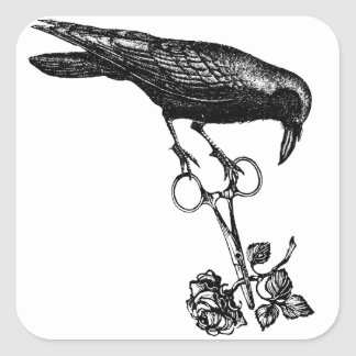 Raven Steals the Rose Square Stickers