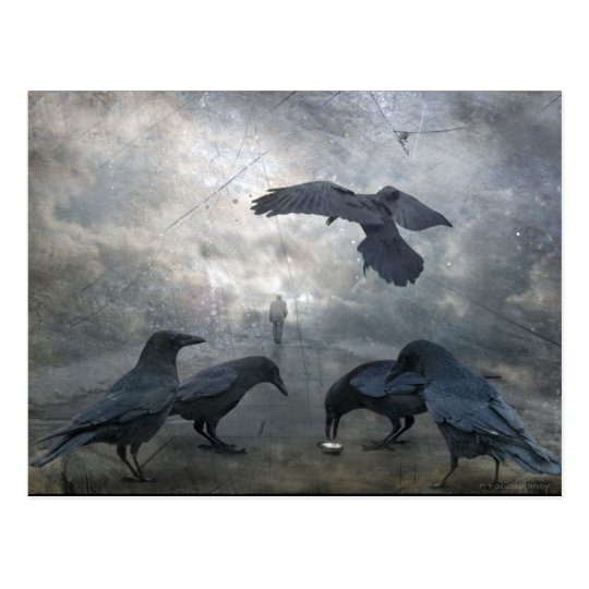 Ravens play with lost Time Postcard