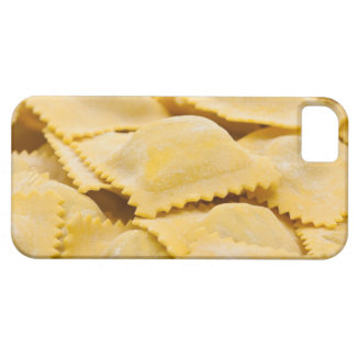 ravioli case for the iPhone 5