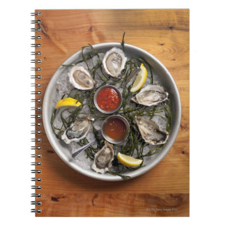 Raw oysters arranged notebook