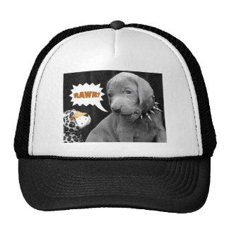 RAWR CAP