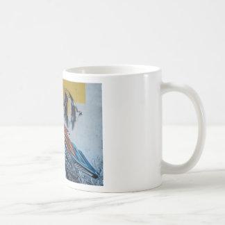 Ray I Mugs