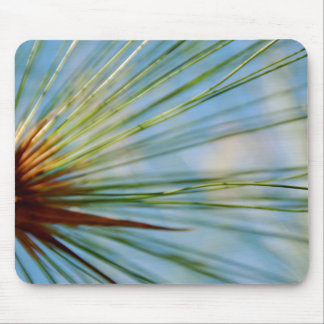 Ray of Grass Mousepad