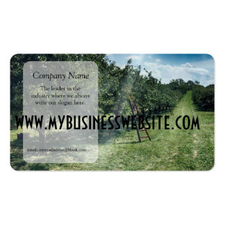 Ray of light hits a Ladder in An Apple Orchard Pack Of Standard Business Cards