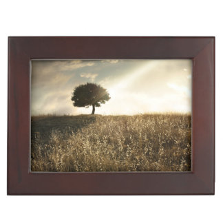 Rays of light break through the dramatic sky keepsake box
