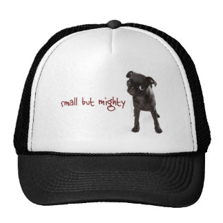 RD Pug Mighty Hat
