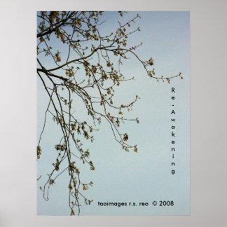 Re-Awakening Poster
