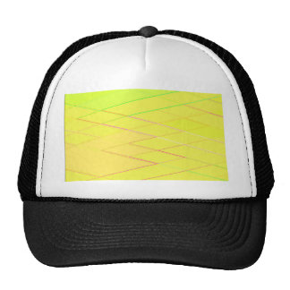 Re-Created Vertices Mesh Hat