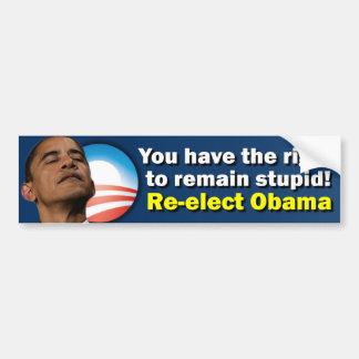 Re-Elect Obama - Anti Barack Obama Car Bumper Sticker