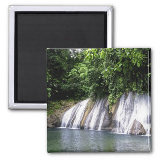 Reach Falls, Port Antonio, Jamaica Magnet