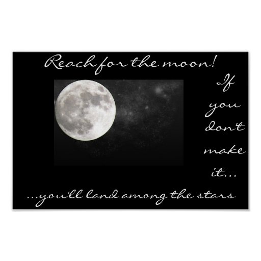 Reach for the moon. poster