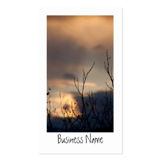 Reach for the Sunset; Promotional Business Cards
