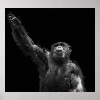 Reaching Wildlife Conservation Chimp Art Canvas Poster