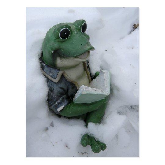 Reading Frog Postcard