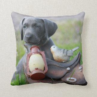 Ready to go cushion